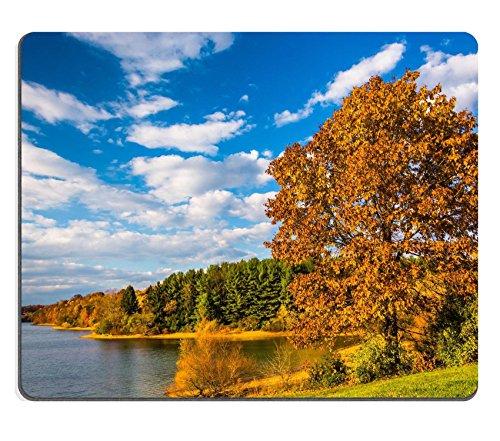 Luxlady Gaming Mousepad Image Id  25228020 Autumn Tree And View Of Lake Marburg At Codorus State Park Pennsylvania