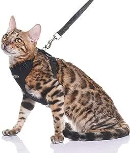 EXPAWLORER Arnés de Seguridad para Gatos con Correa, para Gatos y ...