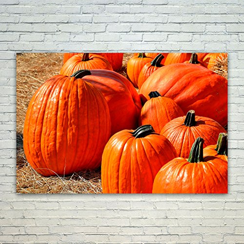 Westlake Art Poster Print Wall Art - Pumpkin