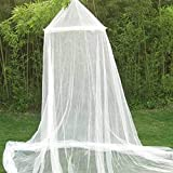 White Lace Bed Canopy Mosquito Nets