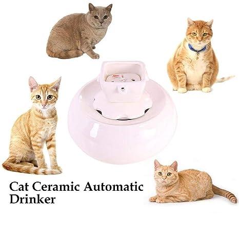 Fuente para gatos Cerámico Fuente de cerámica for gatos ...