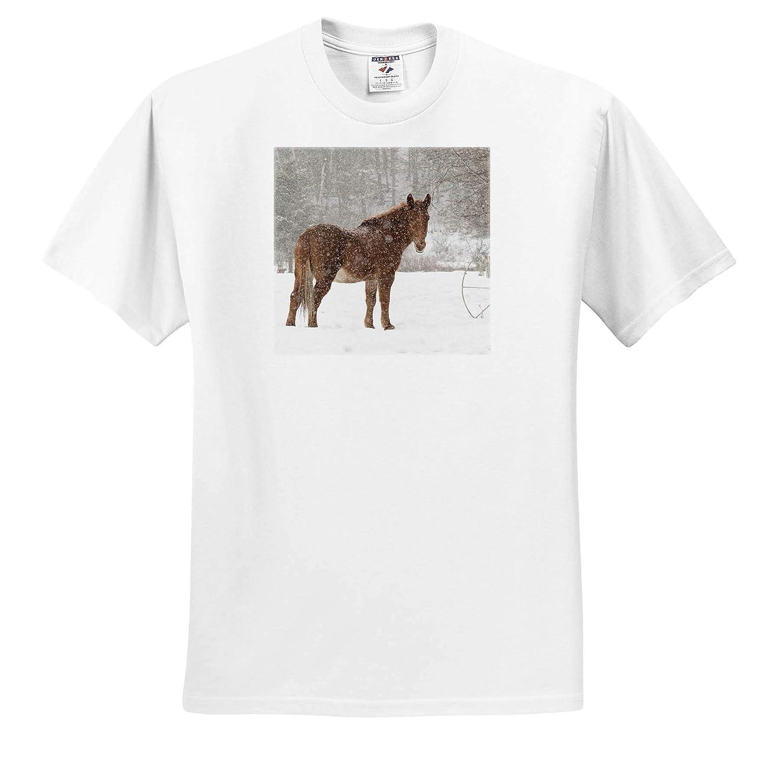 Adult T-Shirt XL Montana ts/_314909 Mule and Falling Snow 3dRose Danita Delimont Kalispell Mammal