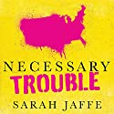 Necessary Trouble: Americans in Revolt Audiobook by Sarah Jaffe Narrated by Amy Melissa Bentley