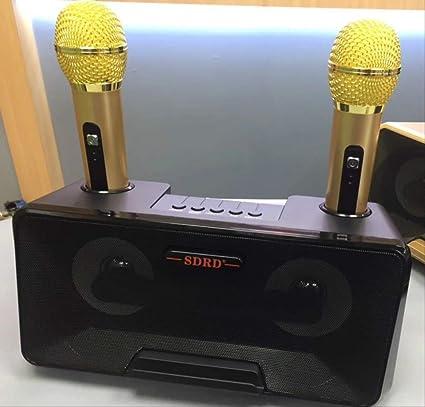 RRYM Micrófonos Micrófono Portátil Altavoz Micrófono Inalámbrico Hogar Ktv Teléfono Móvil Al Aire Libre Bluetooth Audio Cara Ok Machine Player Sets Altavoz Negro: Amazon.es: Instrumentos musicales