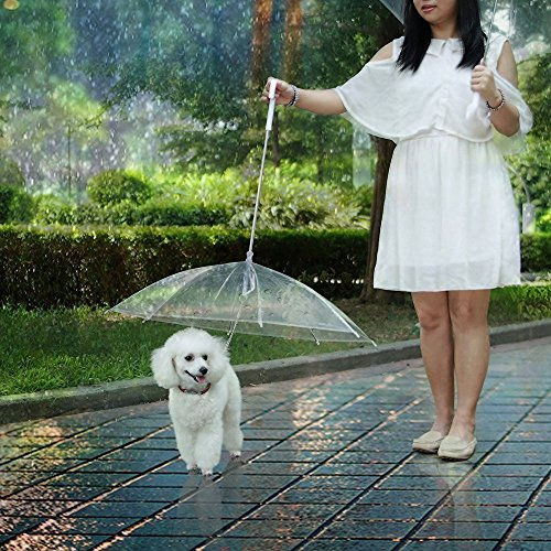 "LESYPET Pet Umbrella Dog Umbrella With Leash, Fits 20"" Pet's Back Length"