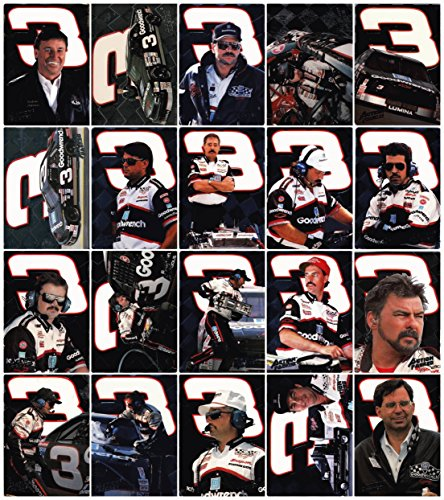 1994 Action Packed - Richard Childress Racing 20 Card Hand Collated - Richard Racing Childress