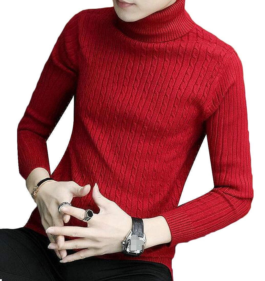 Joe Wenko Mens Solid Color Knitwear Turtle Neck Pullover Slim Winter Jumper Sweaters