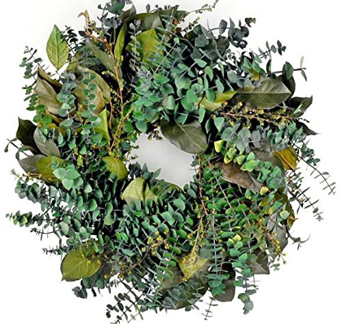 Preserved Eucalyptus (Richland Preserved Green Eucalyptus Wreath 17