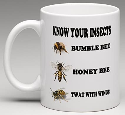 Amazon.com  Susie85Electra Know Your Insects Funny Bees And Wasp ... a36fa51a74fb