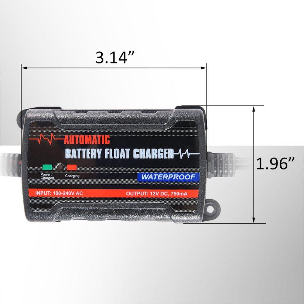Input 100v 240v Output 6v 12v Car Battery Charger Maintainer 750ma Lead Acid Motorcycle Trickle 075a Float Automotive
