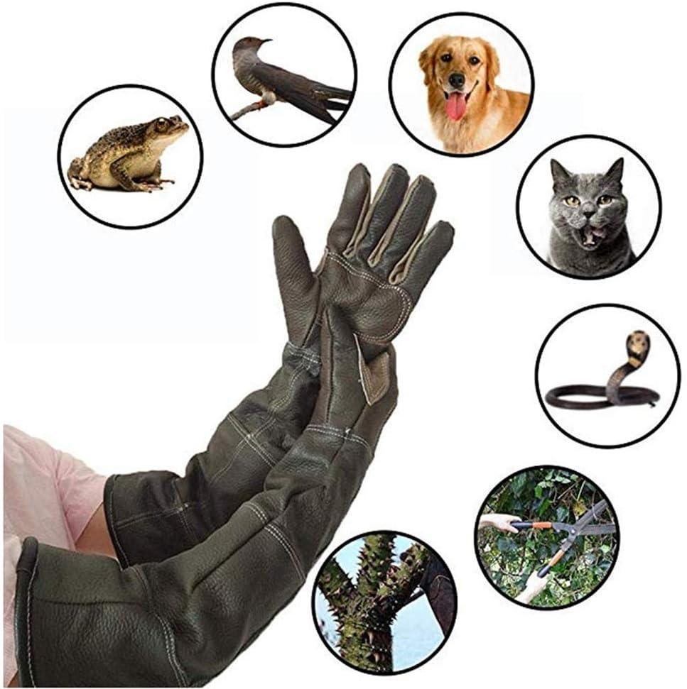 Guantes para Mordeduras De Perro Guantes para Mascotas,Guantes De Cuero Ultra Largos para Atrapar Perros, Gatos, Reptiles, Animales