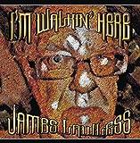 I'm Walkin' Here - James Lawless