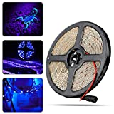 LinkStyle UV/Ultraviolet Black Lights LED Strip 300 LEDs 16.4Ft/5M 3528 Flexible Waterproof Blacklights Purple Light Night Fishing Sterilization Implicitly Party DC12V Power Supply
