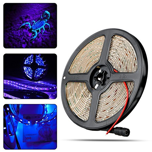 Black Led Rope Lights in Florida - 2