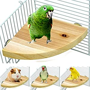 Borangs Wood Perch Bird Platform Parrot Stand Playground Cage Accessories for Small Anminals Rat Hamster Gerbil Rat Mouse Lovebird Finches Conure Budgie Exercise Toy 7 inch 42