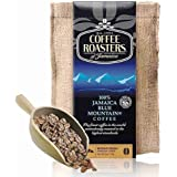 COFFEE ROASTERS 诺斯特 牙买加蓝山咖啡豆 113g(牙买加进口)
