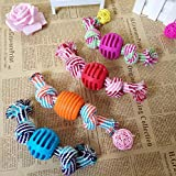 Description:      Type: Rope knot toy      Material: Cotton-TPR      Size:18cm      Product weight:500g      Quantity:1pc      Fit for:Dog      Package:      1pcs Rope knot toy Random Color
