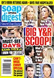 Eileen Davidson, Gina Tognoni, Joshua Morrow and Sharon Case, David Tom, Burgess Jenkins (Young and the Restless), James Scott and Alison Sweeney - July 14, 2014 Soap Opera Digest Magazine