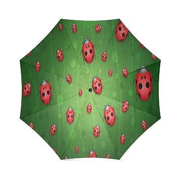 ZLF - Paraguas plegable para mujer, diseño de oso