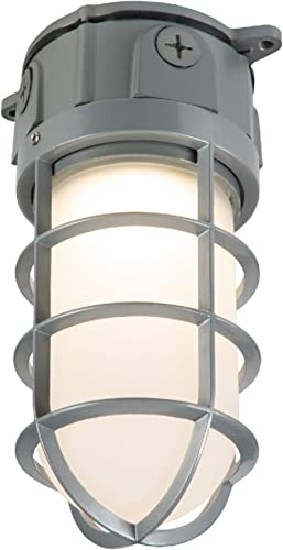 COOPER LIGHTING VT1730 LED vapor tight flood light, White
