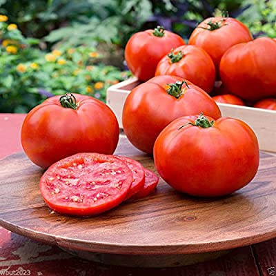 Better Boy Tomato SEEDS, (Lycopersicon lycopersicum) Organic (50 Seeds) : Garden & Outdoor
