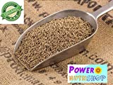 100% All Natural GROWN ORGANIC Premium CUMIN SEEDS WHOLE/CUMIN GROUND POWDER INDIA (Whole Seeds (Product from India), 8 oz)