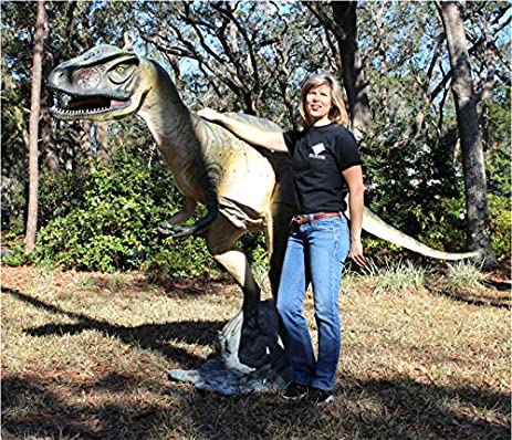 Amazoncom Allosaurus TRex Dinosaur Giant Statue Big Life Size