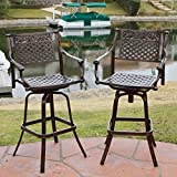Sierra Outdoor Cast Aluminum Swivel Bar Stools (Set Of 2)