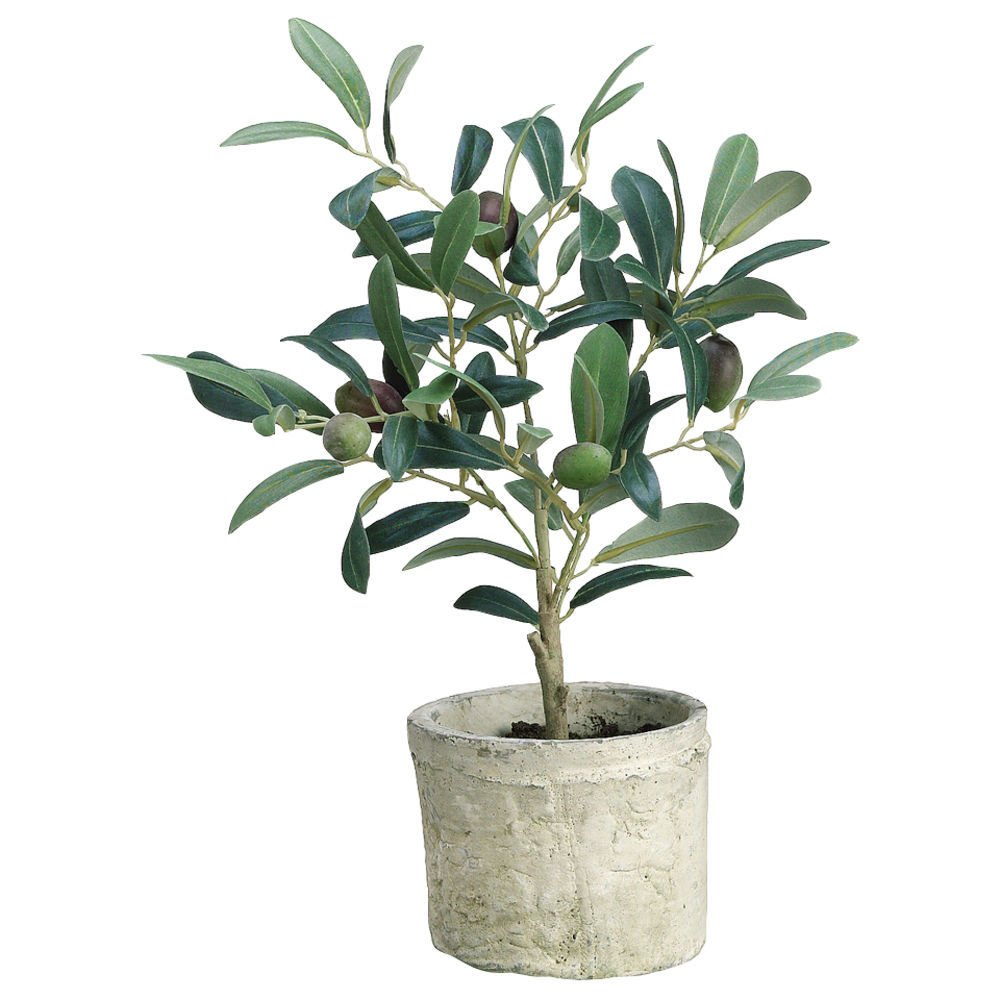 Realistic Potted Mini Green Faux Plant Houseplant Small Artificial Olive Tree