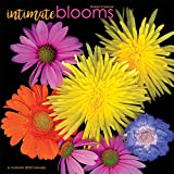 Intimate Blooms Robert Creamer 2018 Wall Calendar
