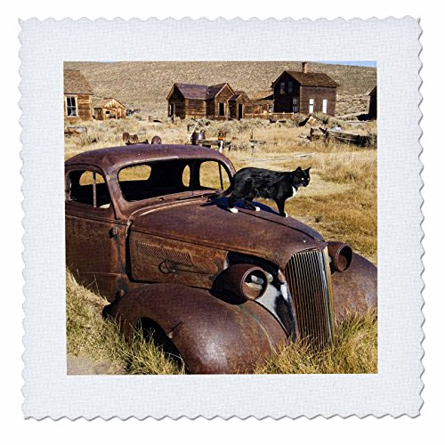 - 3dRose qs_88158_1 California, Bodie State Historic Park, Ghost town-US05 BJA0016-Jaynes Gallery-Quilt Square, 10 by 10-Inch