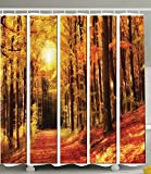 Forest Shower Curtain Brownish North Woods of Nature Art Prints Fall Decor Trees in Park Falling Leaves Fabric Cloth with Sunlight Colorful Bathroom for Home Decorations Artistic Brown Yellow