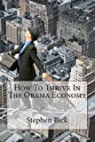 How to Thrive in the Obama Economy, Stephen Bick, 1490975128