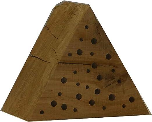 Die Gartenbeet-Kiste El baúl de jardín Triangular de Abeja – Madera Maciza de Roble – Hecho a Mano – Abeja Salvaje – Ayuda para el Nido: Amazon.es: Productos para mascotas
