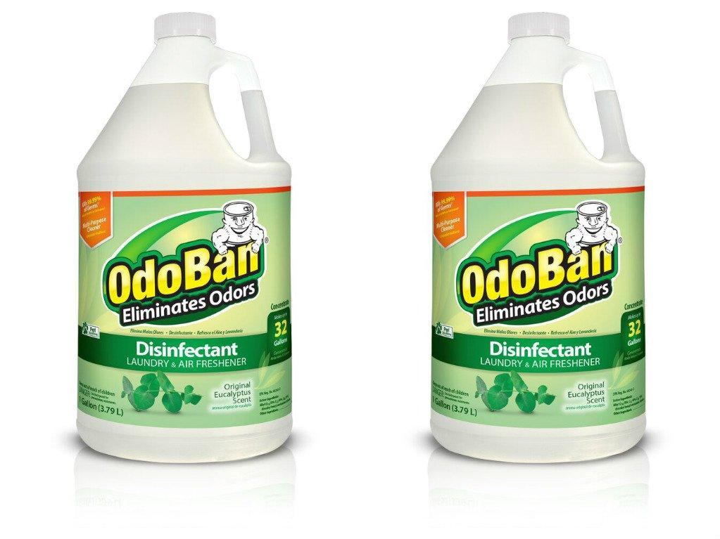 OdoBan Multipurpose Cleaner Concentrate, 2 Gal, Original Eucalyptus Scent - Odor Eliminator, Disinfectant, Flood Fire Water Damage Restoration