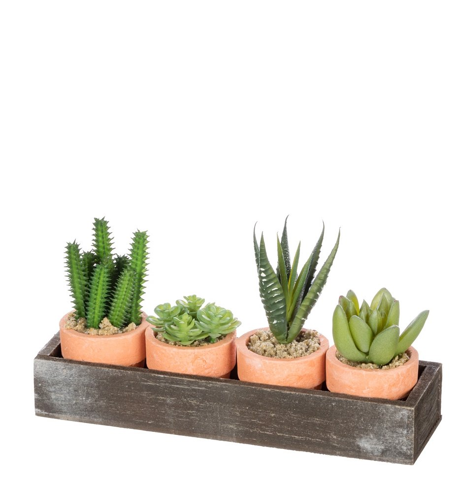 Set of 4 Assorted Sullivans 2-4'' Artificial Potted Succulents with Wood Tray