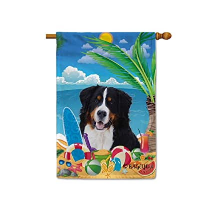 Amazoncom Bageyou Hello Summer My Love Dog Bernese On The