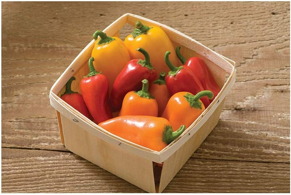 David's Garden Seeds Pepper Specialty Lunchbox Mix 3515 (Multi) 25 Non-GMO, Open Pollinated Seeds
