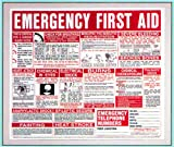 First Aid Wall Chart 22x26