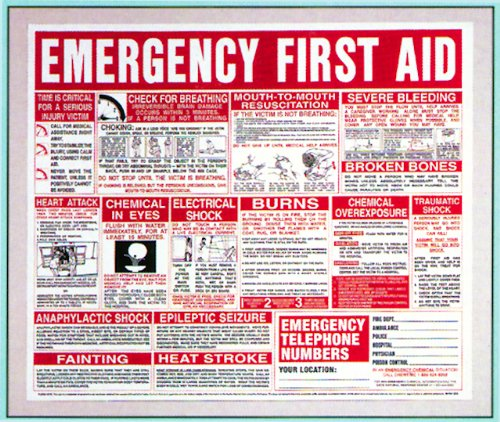 First Aid Wall Chart 22x26 - Buy Online in Qatar  | Hi products in