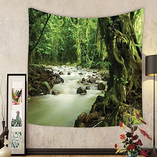 Gzhihine Custom tapestry Rainforest Decorations Tapestry San Rafael Falls Ecuador Misty Natural Waterfall In Lush Jungle Landmark Scene Bedroom Living Room Dorm Decor 60 x 80 Green - Rafael San Outlet