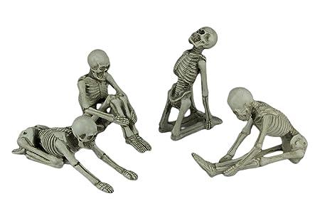 Transpac - Juego de 4 Figuras de Esqueleto para Yoga y ...