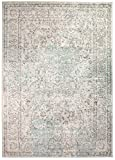 Super Area Rugs 5 x 7 Modern/Traditional Vintage Distressed Area Rug for Living Rooms and Open Spaces Overdyed Neutral