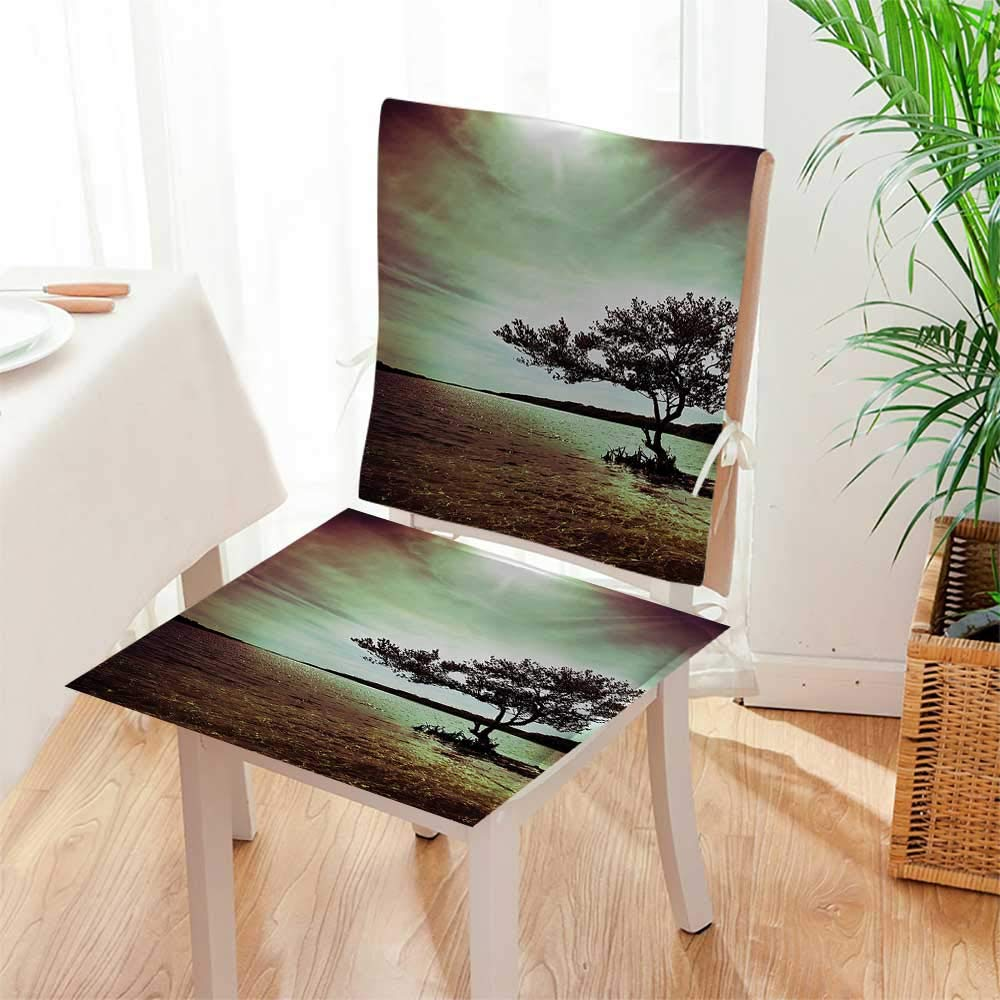 2 Piece Set Chair Pad Living Room droom and DoAccessories College List of Kind Machine Soft Seat Comfortable,Living Room Mat:W17 x H17/Backrest:W17 x H36