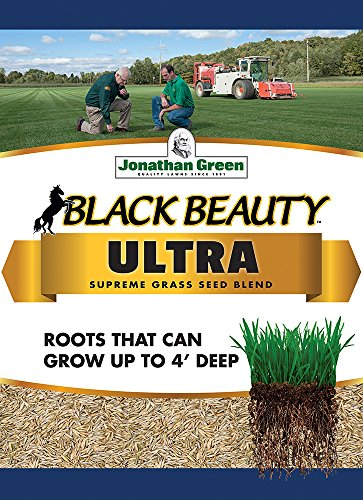 Jonathan Green 10322 Black Beauty Ultra Grass Seed Mix, 7 Pounds (Best Grass Seed Mix For New England)