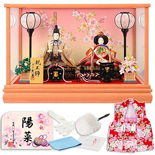 雛人形 久月 ひな人形 ケース 入り 親王飾り h283-kcp-65860nr  タイプB B019GNY0V6