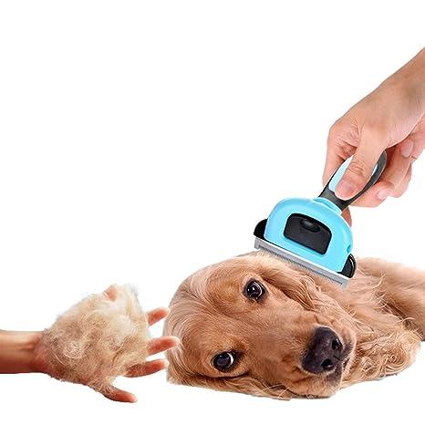 Candora profesional gato & perro de mascota cepillo de aseo para deshedding perfecto pelusa peine para