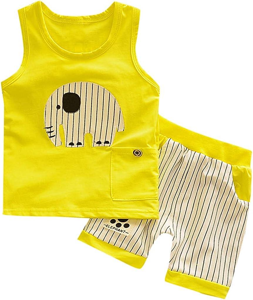 Loyalt Newborn Baby Boys Summer O-Neck Cute Cartoon Style Vest Stripe Shorts Sport Suit for 0-3 Years