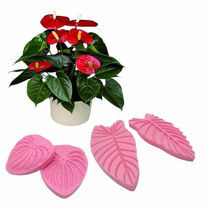 AK Art KITCHENWARE 2 pares de moldes para hacer flores de pasta de goma, hojas de antrurio y velos de pétalos, moldes de silicona para decoración de ...