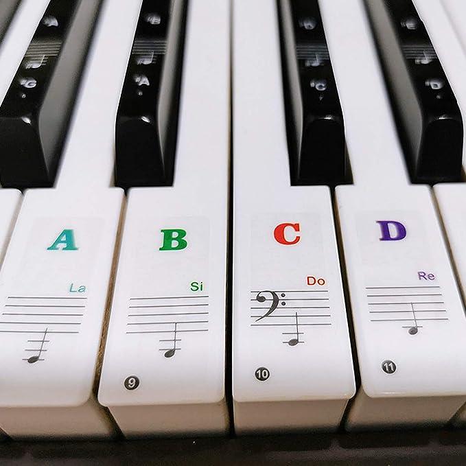 Pegatinas para Pianos o Teclados, Pegatina Notas Etiquetas de Teclas del Piano, Pegatinas para Notas Musicales para Teclas Blancas y Negras, Piano ...
